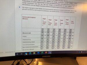 Den kommunale Budgetanalyse